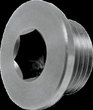 18610522 exhaust plug bung 02 port cap plug victory motorcycle performance 02 sensor removial delete