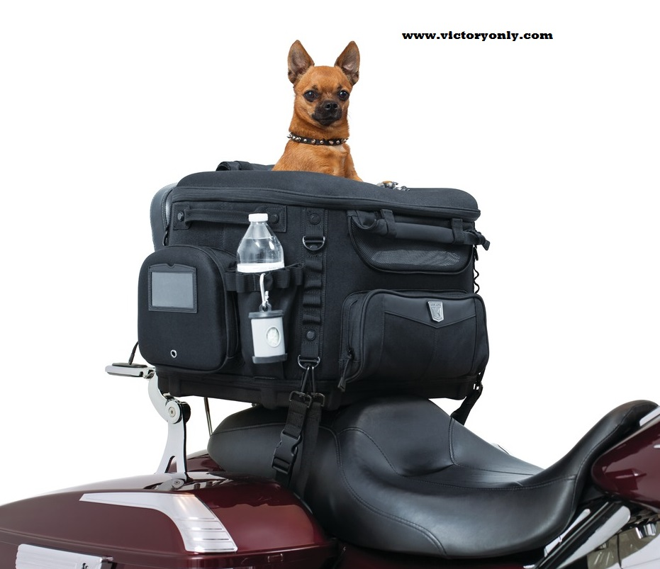 Pet Carriers For Motorcycles Kompact Travel And Leisure